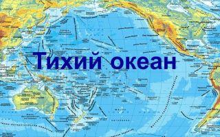 Крупнейшие моря и заливы Тихого океана