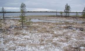 Великое болото
