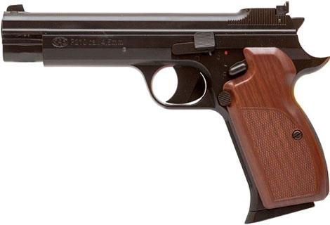 SAS P 210
